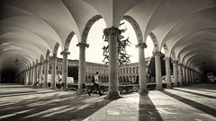 Cloister walker (Pat Charles) Tags: milan milano italy italia italian architecture architectural cloisters arches columns shadows blackwhite bw monochrome person walk walking university education tertiary hallway walkway covered colonnade quadrangle corridor lombardy lombardia europe travel tourism nikon