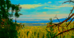 My view coming down from my mountain top (evakongshavn) Tags: view forest valley landscape landschaft paysage green sunset sunsets nikon nikond7200