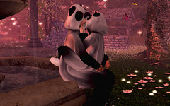 ωє вєℓσиg тσ уσυ αи∂ мє ♡ (Joy Ricci Osbourne) Tags: secondlife retrato panda jardín