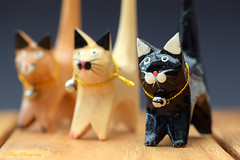 Cats... (Maria Godfrida) Tags: smileonsaturday madeofwood cats tree trio closeup macro 7dwf challengeonflickr objectcloseup cof031 cof031meu cof031mark cof031mvfs cof031chri cif031ettigirbs