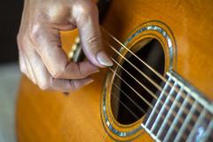 "Made of Wood -Smile on Saturday (Karon Elliott Edleson) Tags: rosewood soundhole laravee acousticguitar music strings ""madeofwood"" smileonsaturday strumming guitar guitarlove"