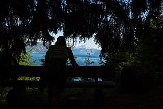 Barb Looking at Sognefjord-
