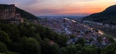 Heidelberg sunset panorama (Dan_Fr) Tags: heidelberg germany neckar river europe panorama sunset goldenhour castel schloss church buildings travel landscape city town trees sony a7r