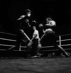 France vs Russia (david zhornski) Tags: fight boxing pellicule delta3200 ilford blackwhite noiretblanc combat boxe sport argentique analog monochrome film120 6x6 mediumformat hasselblad503cw distagon50 hasselblad
