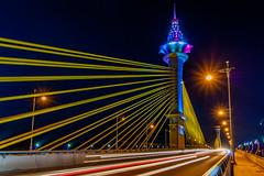 Maha Chesadabodindranusorn Bridge/ Bangkok