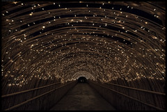 The Tunnel Of Happiness (frankmartinroth) Tags: wide tunnel lights thailand asia kohyaonoi sony a7r3 15mm f45 color red sunstars lines geometry vanishingpoint night darkness availablelight voigtlander