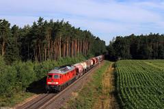 233 306 bei Irrenlohe (Dennis Kraus) Tags: 233 306 51716 irrenlohe schwandorf oberpfalz güterzug ludmilla db