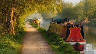 Dawn English Rural Canal Scene in Summer