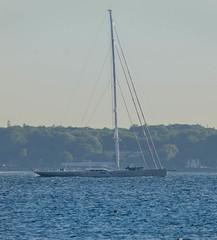 Pink Gin - the Sailing Yacht of the Year - in Öresund (frankmh) Tags: yacht superyacht sailingyacht sailingyachtoftheyear worldsuperyachtawards öresund