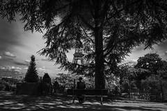 Take a break (Pascalala) Tags: paris noiretblanc noirblanc blackandwhite blackwhite france niko nikond610 nikonafs28300f3556edvr toureiffel trocadero personne homme arbre tree parc park ban bench streetphotography streetphoto