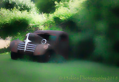 The Lost (HSS) (13skies) Tags: old car truck transport rotting slider slidersunday grill quick postprocessing effects topaz software focus painterly dreamlike vehicle sunshine