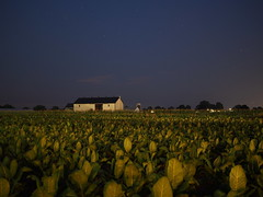 P7160352 (Matt_K) Tags: nightphotography night lancasterpennsylvania lancasterpa