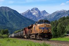 UP 5545 ~ Cokato (Chris City) Tags: train railway railroad mainline freight cpr uprr cokato fernie