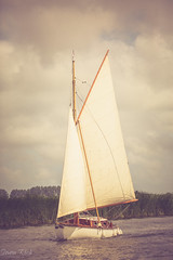 Setting Sail (Simon Rich Photography) Tags: sailing norfolk broads boat sails summer boating simonrich simonrichphotography mrmonts canon wooden