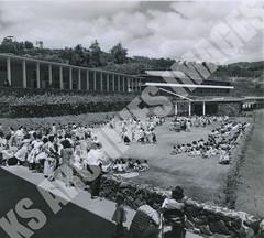 925- 5556 (Kamehameha Schools Archives) Tags: kamehameha archives ksg ksb ks oahu kapalama luryier pop diamond 1955 1956 may day prep school kspd