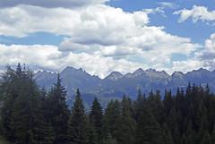 P7085458 (btristan) Tags: valdifiemme predazzo trentino lagorai gardonè mountain trees