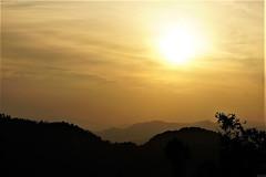 Sunset at Chopta (mohammadammarhere) Tags: sunset sun trees chopta hilly area himalayas mountains beautiful place uttarakhand india click faces everythinghasface