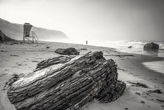 Early morning walk in the fog on the beach (EricMakPhotography) Tags: beach fog black white moody ocean
