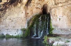 Neapolis. Siracusa. (Svetla (ribonka 78)) Tags: europe italy italia sicilia siracusa travel