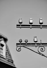 Meißen b&w (rainerneumann831) Tags: meisen bw blackwhite blackandwhite stromleitung ©rainerneumann haus