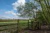 Walking the Daresbury Perimeter.... (joanjbberry) Tags: daresbury fujifilmxt2 xt2 spring countryside grass gates fence trees