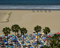calm and chaos.jpg (remiklitsch) Tags: beach umbrellas sand santamonica california summer july juxtaposition nikon remiklitsch morning color colours colorful ocean pacific calm chaos blue red green stripes yellow orange pink palm trees vacation holiday
