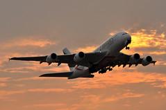 EK0032 LHR-DXB (A380spotter) Tags: takeoff departure climb climbout belly gearinmotion gim retraction dusk sunset airbus a380 800 msn0225 firstrollsroycetrent972powereda380foremirates a6eum expo2020dubaiuaehostcity decal sticker 38m longrangeconfiguration 14f76j429y الإمارات emiratesairline uae ek ek0032 lhrdxb runway09r 09r london heathrow egll lhr