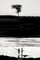 Fishing Time...❤️📷 Kids are struggling to catch fish on the riverbank. #nationalgeographic,#nationalgeographic_,#travel,#travelphotography,#friends,#friendship,#sunset,#sunsetlovers,#village,#@trell.community,#@trellingpune,#viewbug,#viewbugf (samphotography07) Tags: naturephotography sunsetlovers viewbug gopro photography travelphotography wildlife village goprohero6 traveller photographymaniacs viewbugfeature nature nationalgeographic commonlizard naturelovers wildlifephotograph beautifuldestinations friendship sunset goprolife friends travel