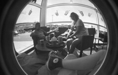 img017 (welshdude1991) Tags: lomography bw cats fisheye ilford 35mmfilm pov pointofview cars