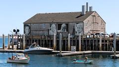 Fisherman's Wharf (Robert Wash) Tags: massachusetts ma capecod provincetown fisherman'swharf theyalsofacedthesea evasilva maryjason beacabral francesraymond ewanogiec normaholt