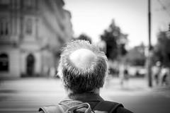Conditioned (CoolMcFlash) Tags: person man street streetphotography candid head dof depthoffield fujifilm xt2 bald rear kopf tiefenschärfe glatze fotografie photography xf35mmf14 r bnw bw blackwhite sw schwarzweis hair haare