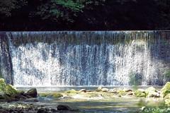 Pour faire passer la canicule ! 2 (Jean-Daniel David) Tags: rivière arnon suisse suisseromande nordvaudois jura forêt eau nature chute feuille feuillage vert verdure reflet