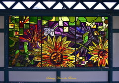 Can you direct me to NYBG? (westmin87) Tags: 6 stainedglass nycsubwayart 2train lisaamowitz