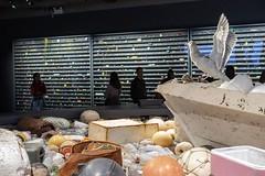 in the round... (3/12) (steveleenow) Tags: vancouver vancouverbc vancouverbritishcolumbia vancouverbccanada vancouverbritishcolumbiacanada bc britishcolumbia britishcolumbiacanada canada vancouveraquarium aquarium douglascoupland vortex vortexatva vortextatva waste garbage debris plastic plasticwaste trash art artinstallation installation exhibition artexhibition sculpture vanouverbritishcolumbia stanleypark artist artists artwork