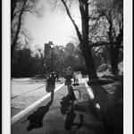 shadow walking thumbnail