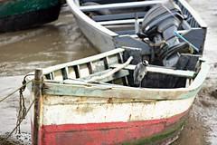 Ogle July 2018 #17 (*Amanda Richards) Tags: ogle atlanticcoast atlantic guyana georgetown seawall fishingboats fishing ibis