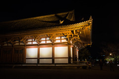 2017_11_16  (203)L (Eugene's Image Garden) Tags: 日本 関西 京都 東寺 japan kansai kyoto