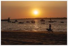 . (^ ^ Saha) Tags: atardecer sunset sanlúcardebarrameda cadiz guadalquivir doñana cante vicentesotosordera