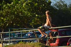 On the fence (radargeek) Tags: hawaii beach hookipabeachpark maui isleofmaui island may 2017
