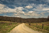 Around The Bend (riqwammy) Tags: road virginia patrickcountyva fence sky clouds trees forest grass pasture path walk blue green farmland scenic landscape rural nikon d750 spring vanishingpoint