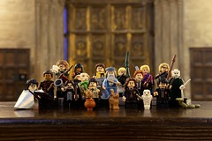 LEGO Harry Potter 71022 Collectible Minifigures (hello_bricks) Tags: lego harry potter 71022 collectible minifigures harrypotter wizard wizardingworld fantasticbeasts rowling collectibleminifigures