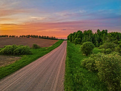 Summer in the Country (Daniel000000) Tags: country trees green sky nature landscape photography light horizon tree wisconsin midwest goodrich sunset sun set new color adventure explore dji spark drone uav photo