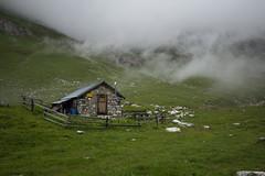 Alp Zavretta (Toni_V) Tags: m2408276 rangefinder messsucher leicam mp typ240 type240 28mm elmaritm12828asph hiking wanderung alpzavretta graubünden grisons grischun alps alpen switzerland schweiz suisse svizzera svizra fog nebel mist europe albula predabergün ©toniv 2018 180707