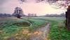 Berlin Lübars am Morgen (Schirione) Tags: lübars endmoräne berlin morgenstimmung landschaft landschaftsfoto landscape frühling olympus em10 blende8 baum 9mm 918mm weitwinkel
