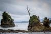 Three Graces (LadyBMerritt) Tags: ocean pacific oregon threegraces coastal