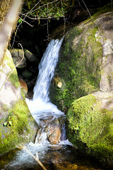 bigsouthfork_3831 (jcbonbon) Tags: april big south fork tennessee park spring waterfall