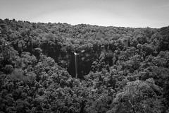 In the middle of nowhere. (Pablin79) Tags: tree clear sky horizon over land treetop overcast landscape light water waterfall saltoencantado misiones argentina artistobulodelvalle trees monochrome black white grey outdoors longexposure rocks forest wood nature