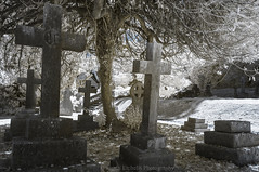 Past Residents (James Etchells) Tags: frome somerset unfrared ir photography urban town church surreal landscape landscapes graveyard grave yard light dark colour color saint st john johns tree trees nature natural world past sky stones historic