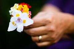 2018-189 Bouquet