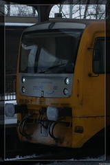 Cold! Velké Meziříčí (CZ). (Joeri.Mertens) Tags: czech railways train czechrailways railraod